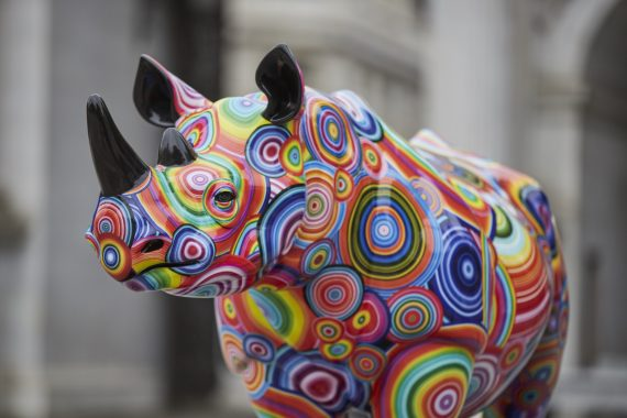 The Tusk Rhino Trail charges into Marble Arch
