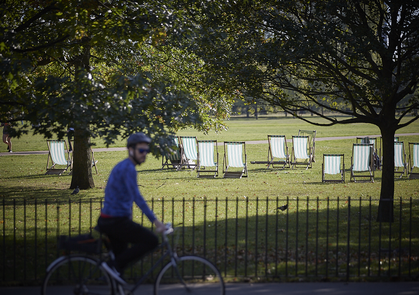 Have your say: The Royal Parks Movement Strategy